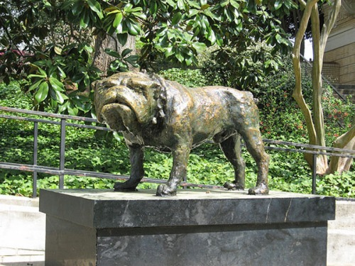 The statue of the ugly bulldog at Memorial Hall.