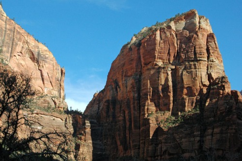 Angels Landing from the trailhead. It's the one on the right.