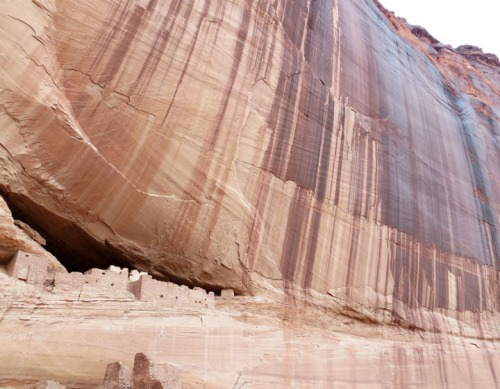 The dramatic wall of desert varnish above White House Ruin.