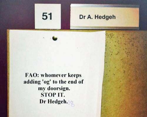 Dr. Hedgeh