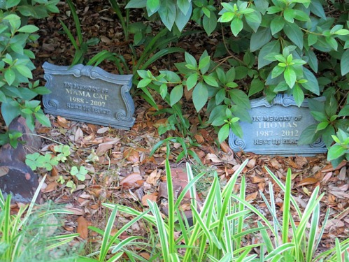 Some of the graves in Betty's garden.