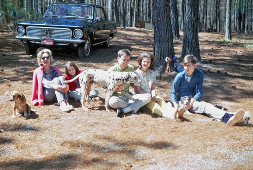 Relaxing at the Smith place. Left to right: Nuisance the Beagle, Mom, Betty, Lightning the Dalmatian, Lee, his girlfriend Sherry, and Danny. Danny is holding Dora, a Beagle pup. Dora's sister Doris is peeking out from behind Danny's shoe.