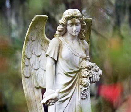 The pensive angel contemplating a dove.