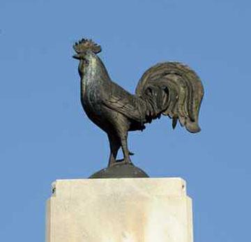 Poultry Park-2
