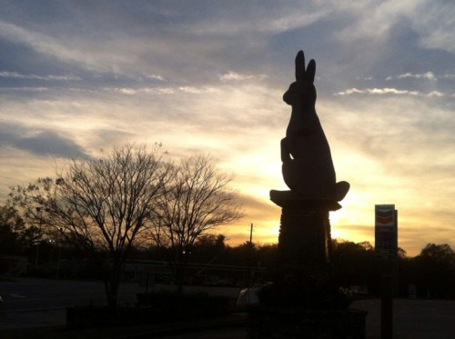 Rabbit statue-2